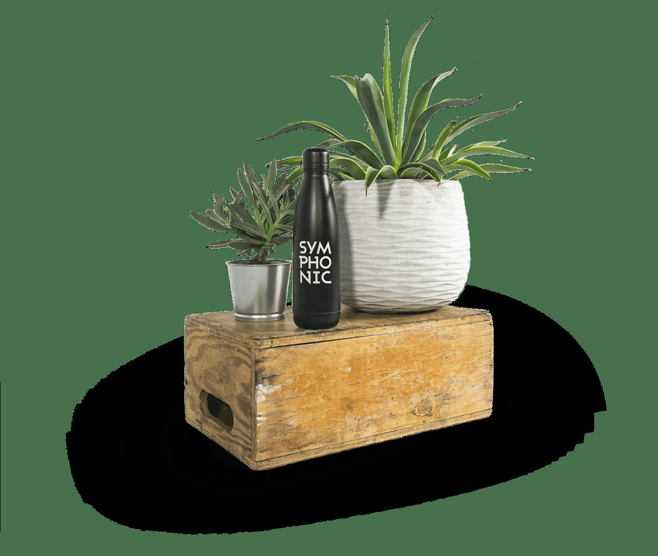 plantimage2smalld