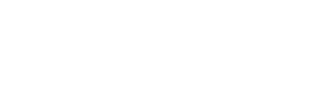 Noiseporn_Logo_2019_Final_HorizontalWhite